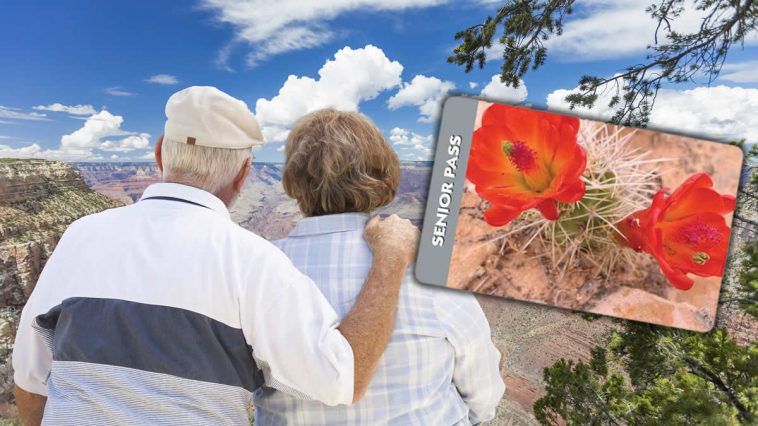 National-Park-Service-Senior-Pass