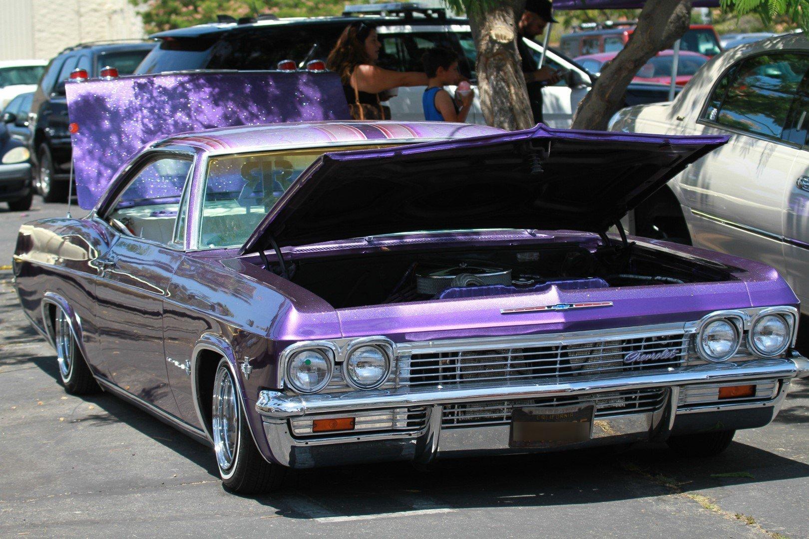 IMG_4051_Impala65